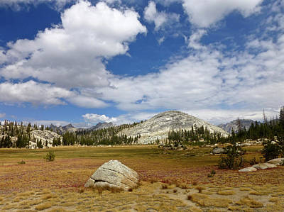 Photograph - John Muir Trail High Sierra Camp Meadow by Amelia Racca