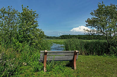 Bench Photograph - Meadow Bench by Donna Doherty