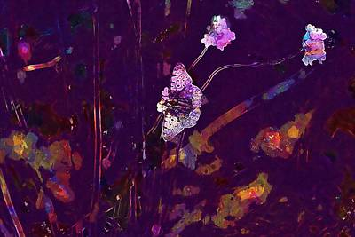 Digital Art - Meadow Butterfly Flowers Close  by PixBreak Art