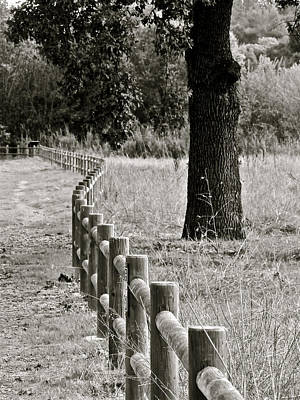 Ojai Wall Art - Photograph - Meadow Fence by Liz Vernand