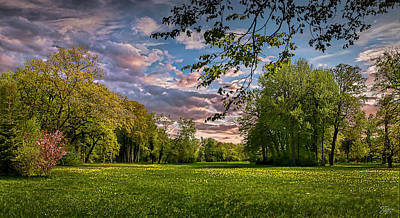 Photograph - Meadow In Sans Souci by Endre Balogh