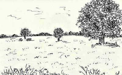 Drawing - Meadow Near Woerlitz by Chani Demuijlder