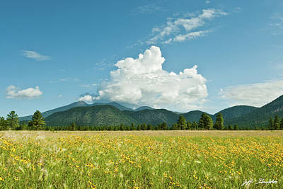 Photograph - Meadow Of Sunflowers And The San Francisco Peaks by Jeff Goulden