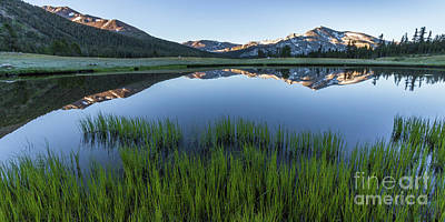 Photograph - Meadow Reflections  by Brandon Bonafede