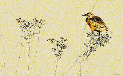 Meadowlark Digital Art - Meadowlark In Kansas Prairie 1 by Anna Louise