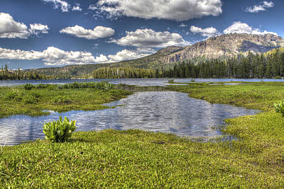 Photograph - Meadows 2 by SC Heffner