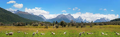 Photograph - Meadows And Snow-capped Mountains At Mount Aspiring National Park by Daniela Constantinescu