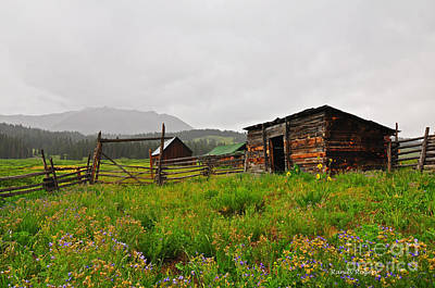 Photograph - Meadows Cabin by Randy Rogers