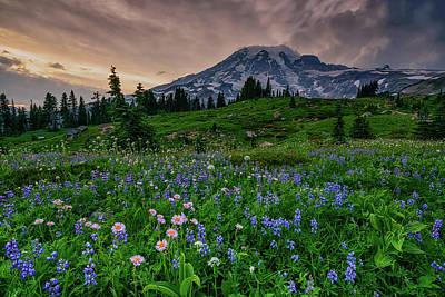 Photograph - Meadows Of Heaven by Dan Mihai