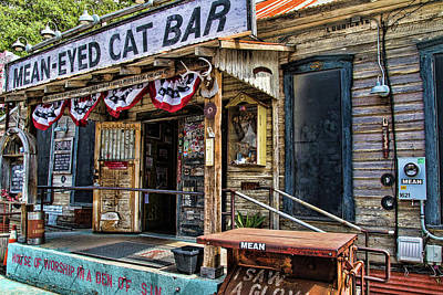 Photograph - Mean Eyed Cat Bar by Steven Bateson