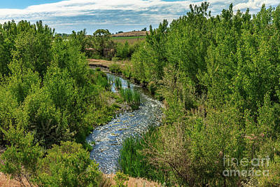 Photograph - Meander Stream  by Robert Bales