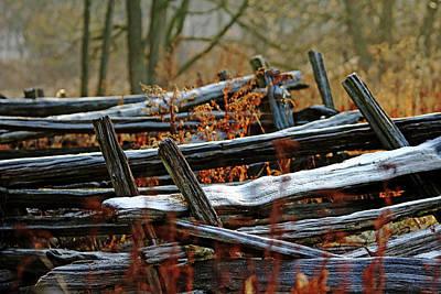 Photograph - Meandering Cedar Rail Fence by Debbie Oppermann