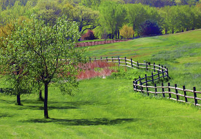 Photograph - Meandering Fence by Nikolyn McDonald