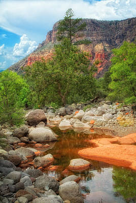 Photograph - Meandering Oak Creek Canyon by Bob Coates