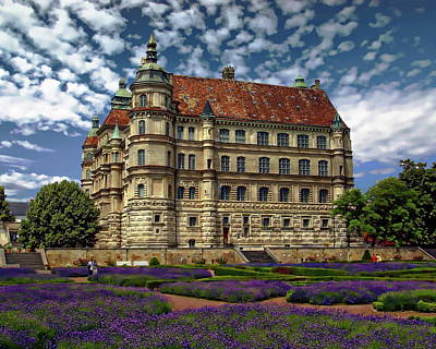 Photograph - Mecklenburg Palace by Anthony Dezenzio