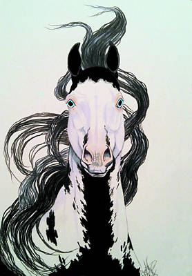 Drawing - Medicine Hat Tobiano by Cheryl Poland