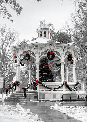 Photograph - Medina Gazebo by Ann Bridges