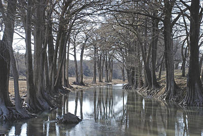 Photograph - Medina River In Winter by Brian Kinney
