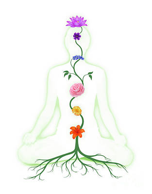 Chakras Photograph - Meditating Woman With Chakras Shown As Flowers by Awen Fine Art Prints