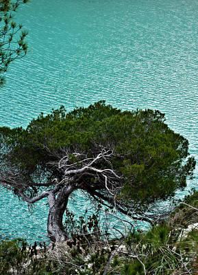 Photograph - Mediterranean Colors By Pedro Cardona by Pedro Cardona Llambias