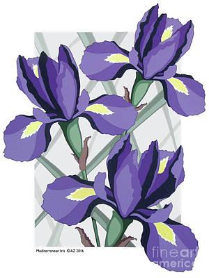 Mediterranean Iris Art Print