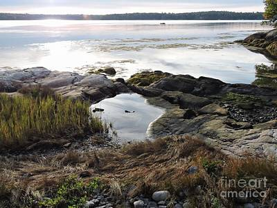 Photograph - Medomak River, Me by Marcia Lee Jones