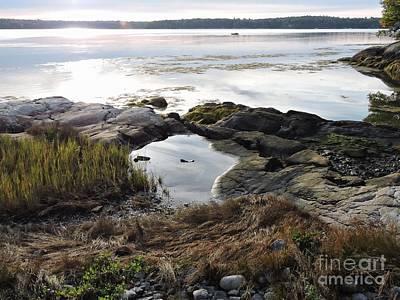 Photograph - Medomak River, Me by Marcia Lee Jones