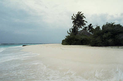 Photograph - Meedhupparu Beach by Terence Davis