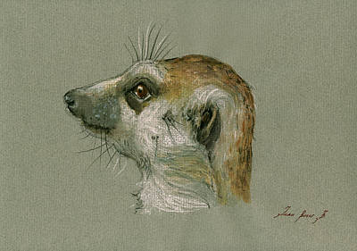 Meerkat Wall Art - Painting - Meerkat Or Suricate Painting by Juan  Bosco