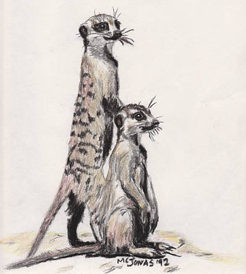 Meerkat Drawing - Meerkats by Marqueta Graham