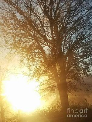 Photograph - Meet Me At Sunrise by Maria Urso