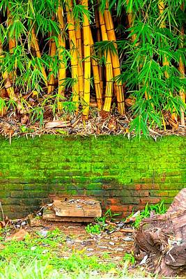 Photograph - Meet Me At The Bamboo 01 by Dora Hathazi Mendes