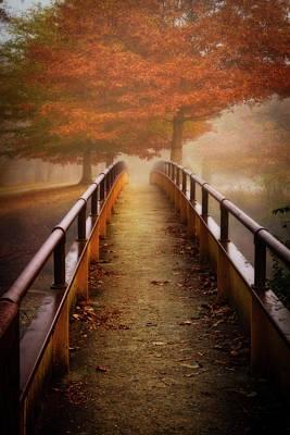 Photograph - Meet Me On The Bridge At Dawn by Debra and Dave Vanderlaan