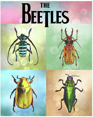 Digital Art - Meet The Beetles by John Haldane