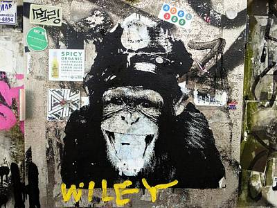 Spraypaint Photograph - Meet Wiley In New York  by Funkpix Photo Hunter