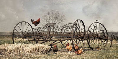 Art Print featuring the photograph Meeting At Rusty Rake by Robin-Lee Vieira