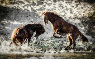 Photograph - Meeting On The River  by Saija Lehtonen