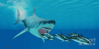 Megalodon Attack Art Print by Corey Ford