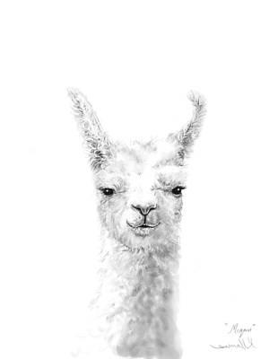 Animals Drawings - Megan by K Llamas