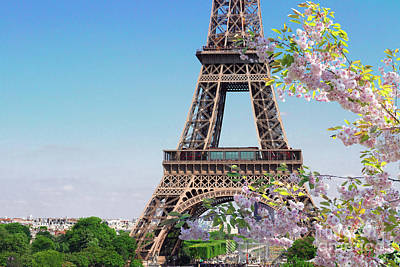 Photograph - Eiffel Tower And Spring Blossom by Anastasy Yarmolovich