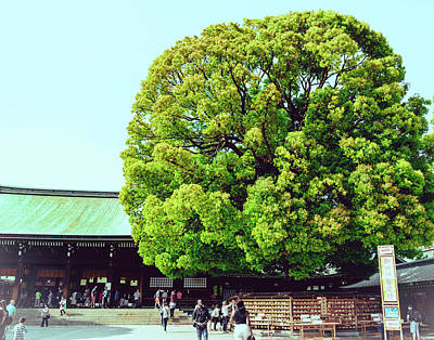 Photograph - Meiji Shrine by Nisah Cheatham