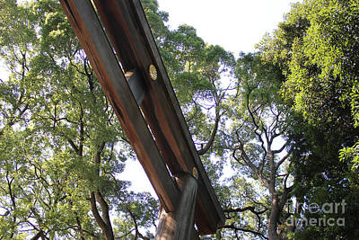 Photograph - Meiji Shrine by Wilko Van de Kamp