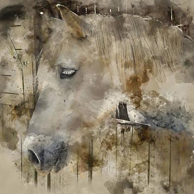 Melancholy - Horse Colorful Portrait 3 - By Diana Van Art Print
