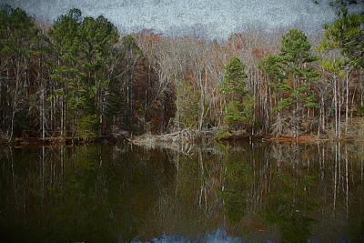 Photograph - Melancholy Pond Reflection Landscape by Kathy Clark