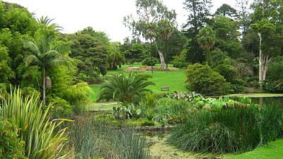 Melbourne Botanical Gardens Art Print