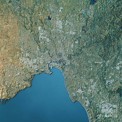 Melbourne Topographic Map Natural Color Top View Art Print