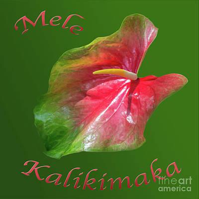 Photograph - Mele Kalikimaka Lily by Cheryl Del Toro