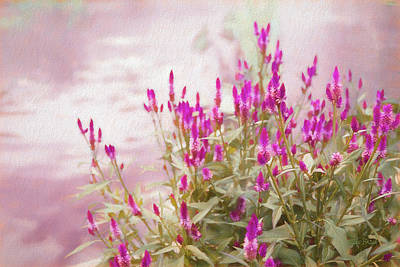Photograph - Mellow Afternoon by Mike Braun