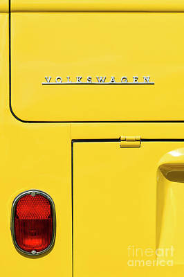 Photograph - Mellow Yellow by Tim Gainey