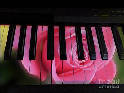 Photograph - Melodious Rose by Joan-Violet Stretch